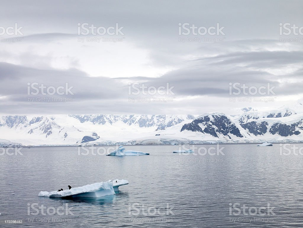 Antarctica High-Res 39 MegaPixel royalty-free stock photo