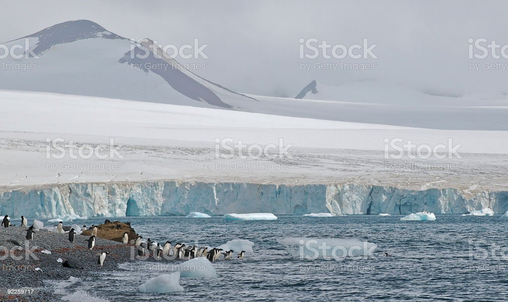 Antarctica Spring with Mountain, Beach, and Penguins stock photo