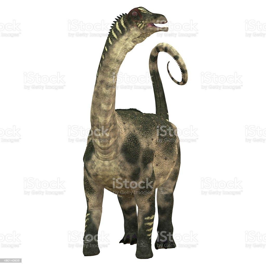 Antarctosaurus over White stock photo