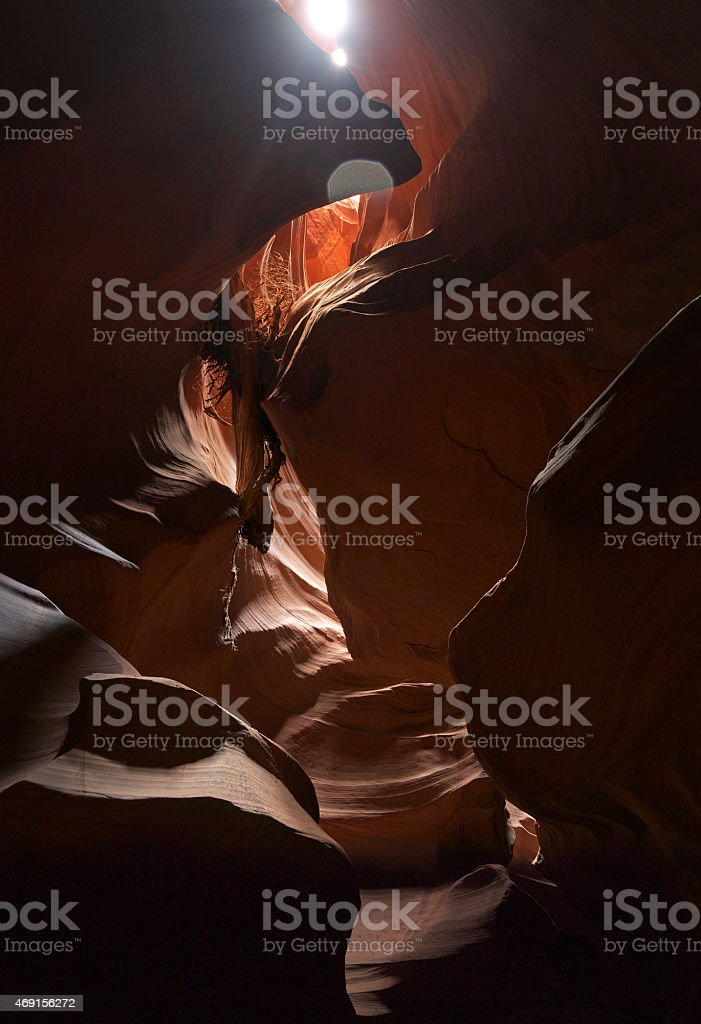 Stucked log in Antelope Canyon stock photo