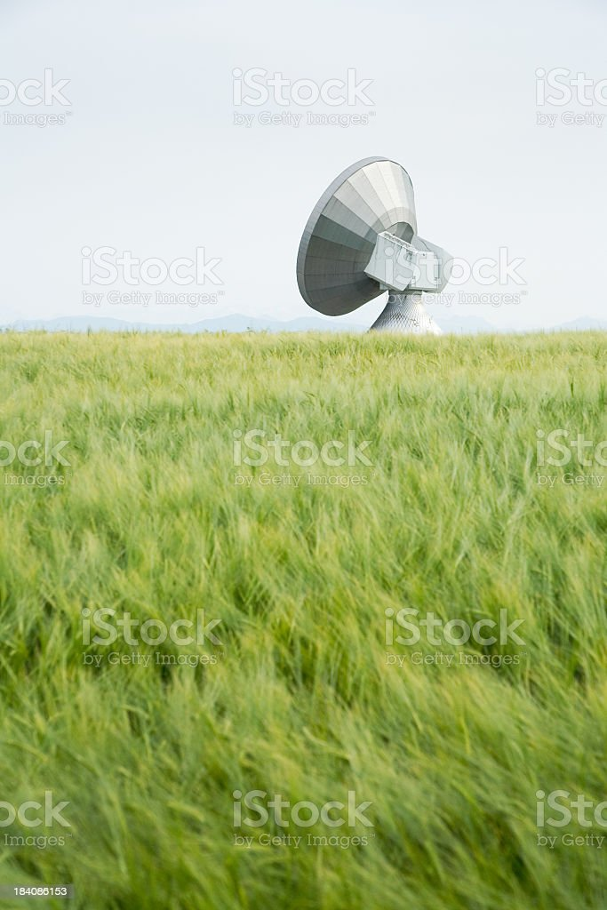 Antenna Field royalty-free stock photo