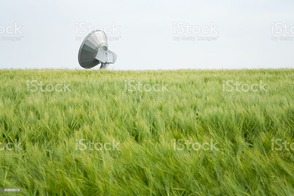 Antenna Field royalty-free stock photo
