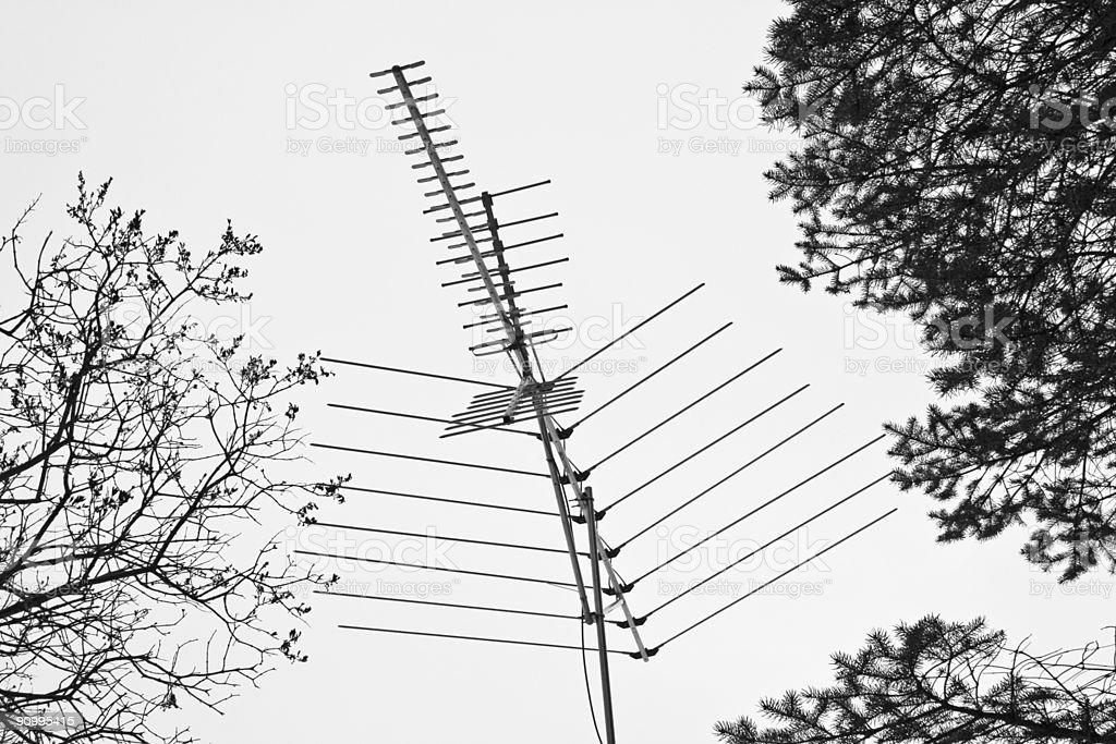 TV Antenna in Trees (b&w) royalty-free stock photo