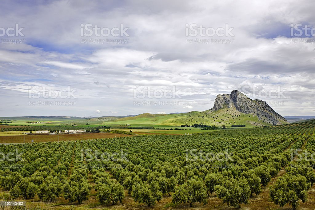 Antequera, Andalucia, Spain royalty-free stock photo