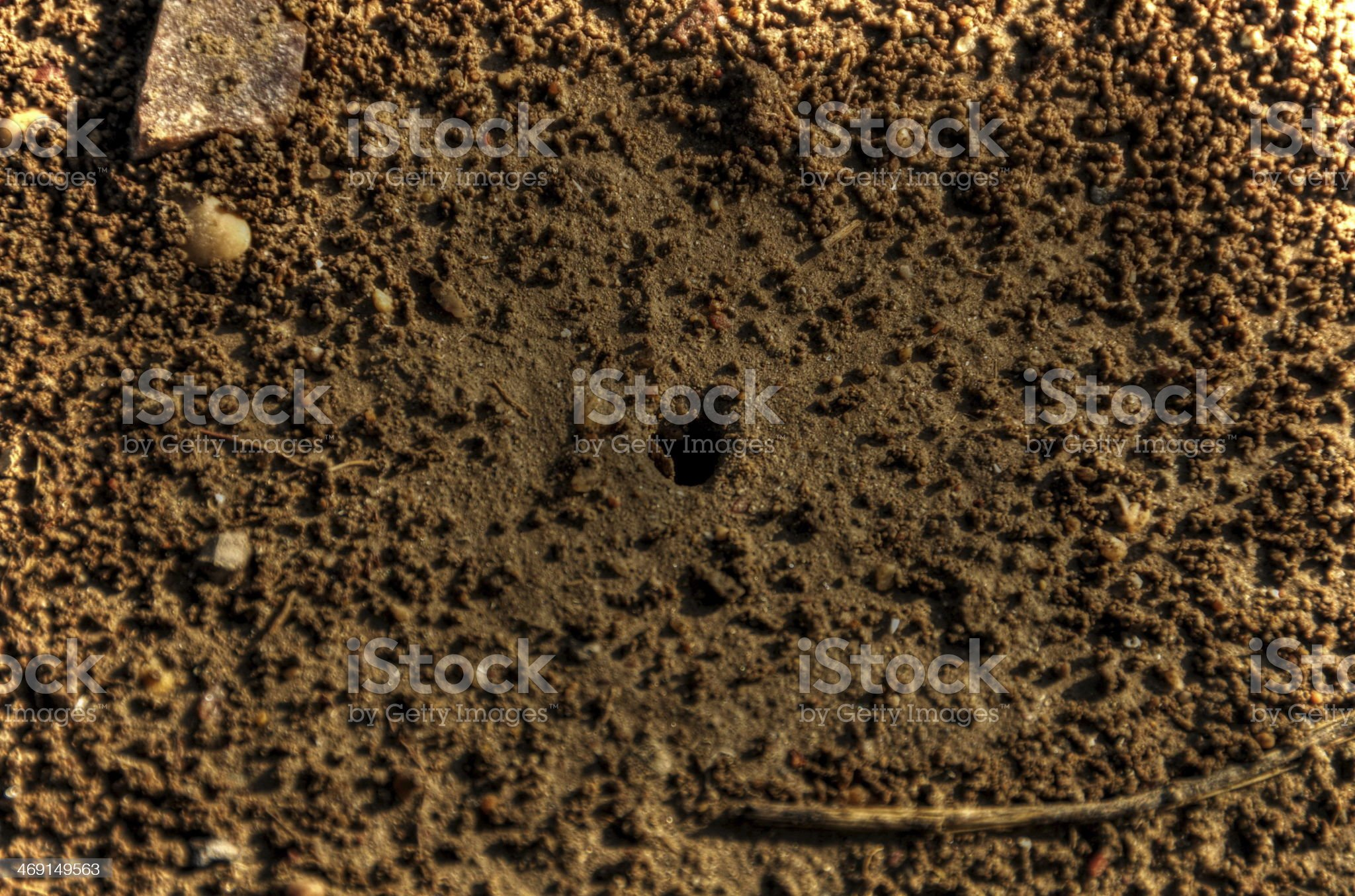 Anthill royalty-free stock photo