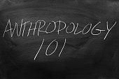 Anthropology 101 On A Blackboard