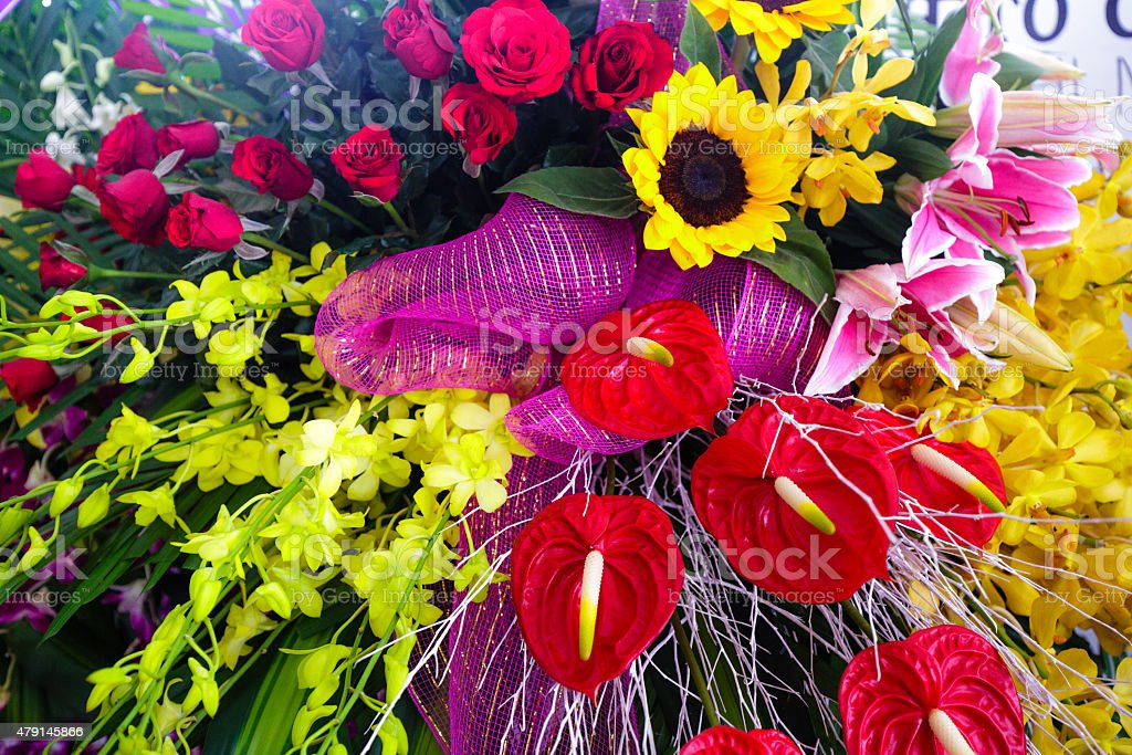 Anthurium flower red and yellow orchids for the event closeup stock photo