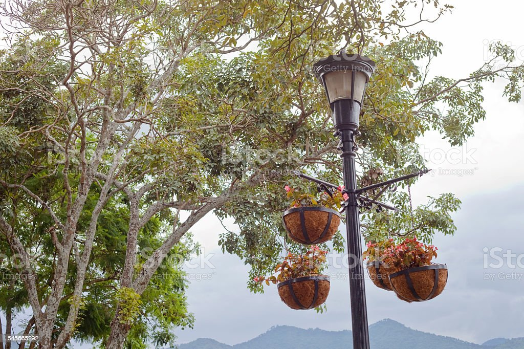 Antigua Guatemala Hanging Baskets stock photo