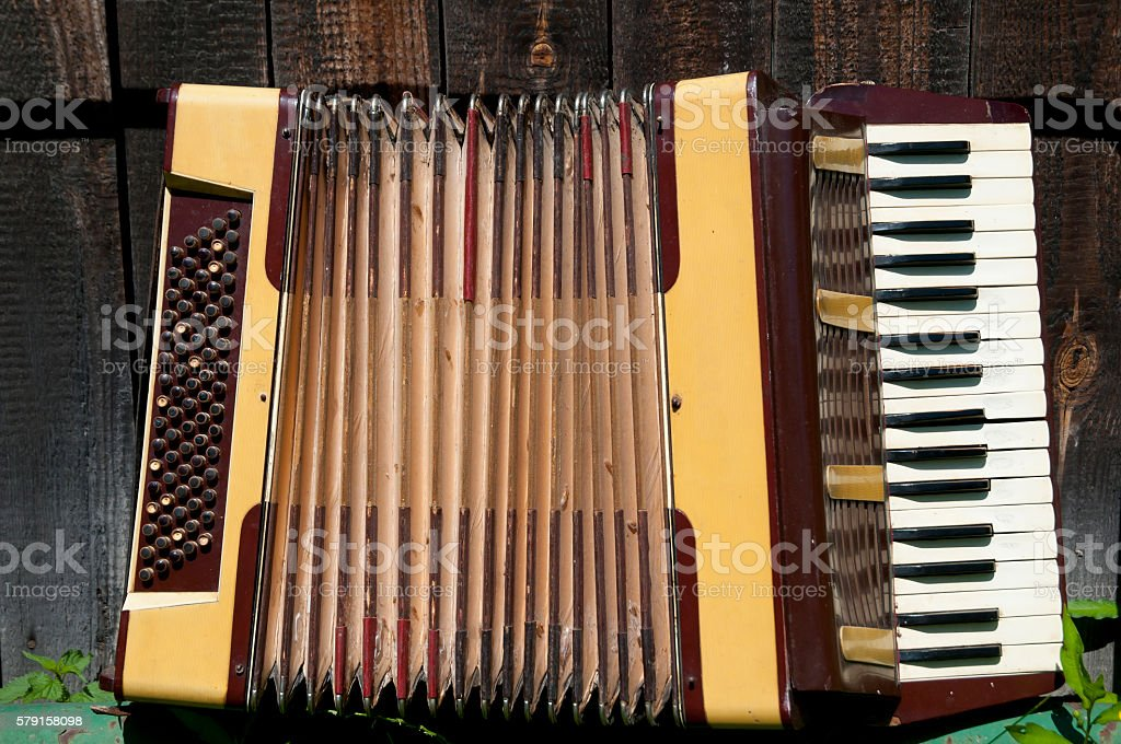 Antique Accordion stock photo