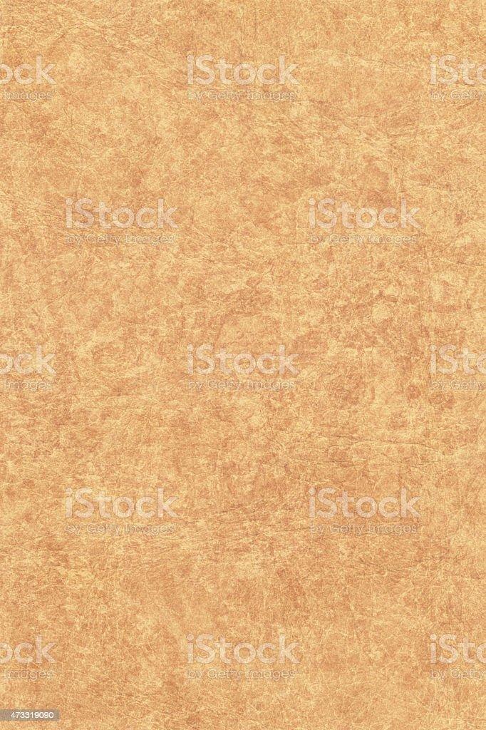 Antique Animal Skin Parchment Coarse Grunge Texture stock photo