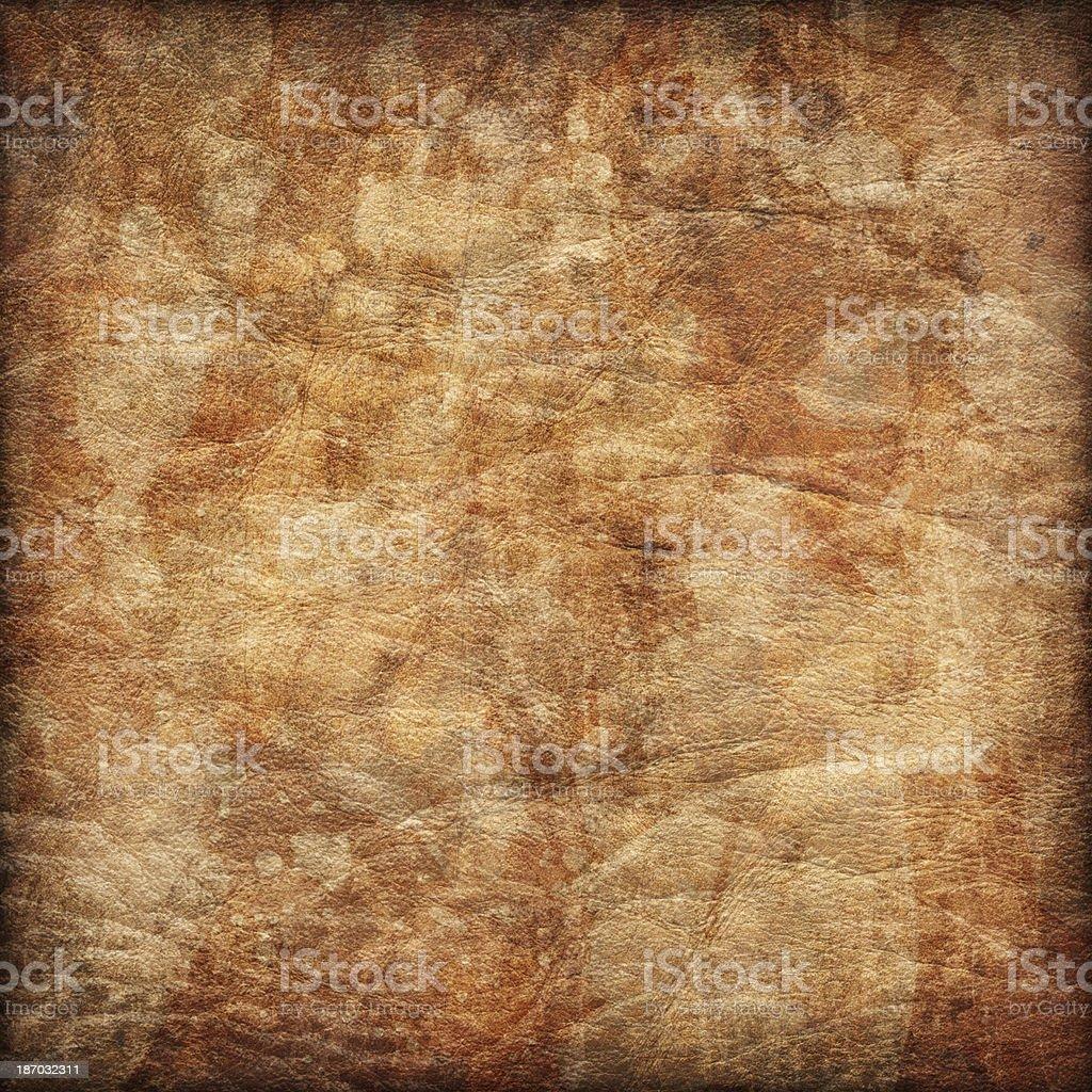 Antique Animal Skin Parchment Crumpled Mottled Vignette Grunge Texture stock photo