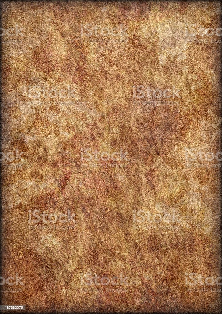 Antique Animal Skin Parchment Crumpled Mottled Vignette Grunge Texture royalty-free stock photo