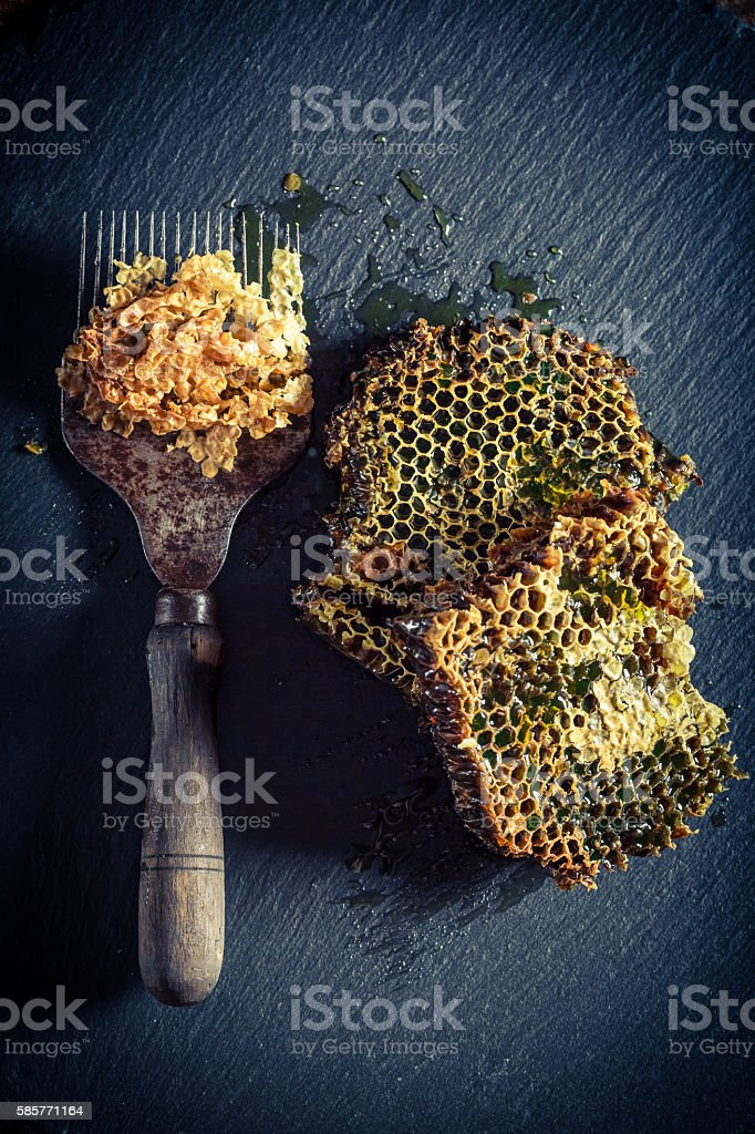 Antique beekeeper tools with honeycomb full of honey stock photo
