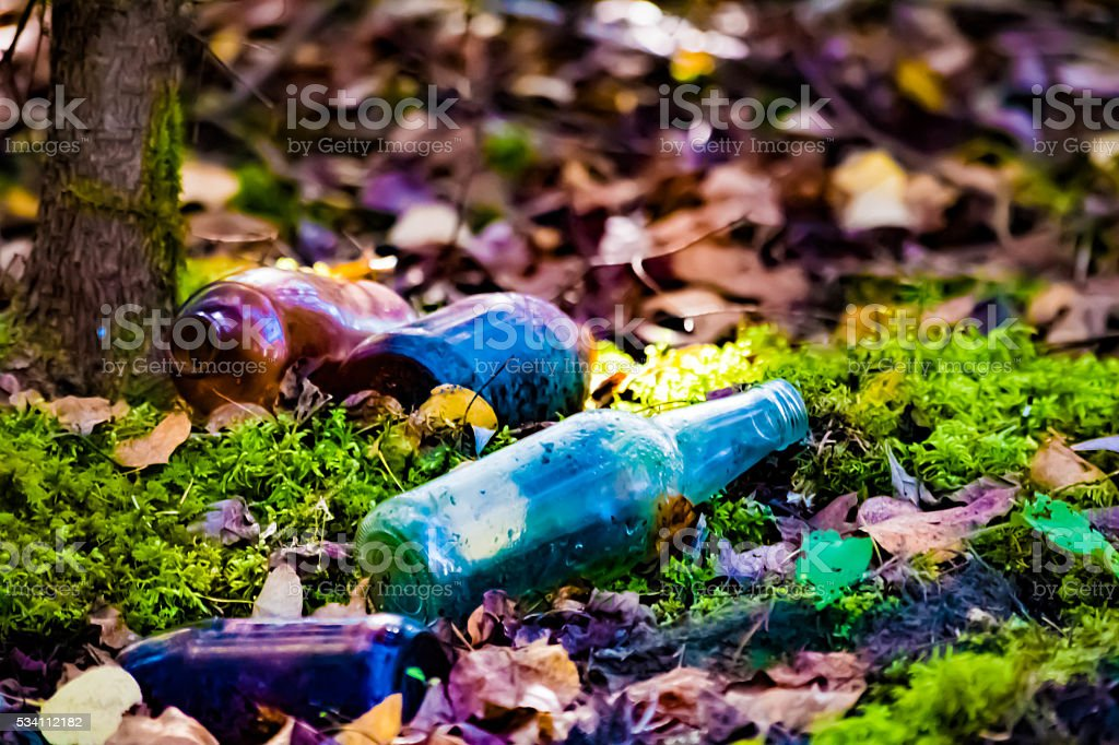 Antique bottles in the moss royalty-free stock photo