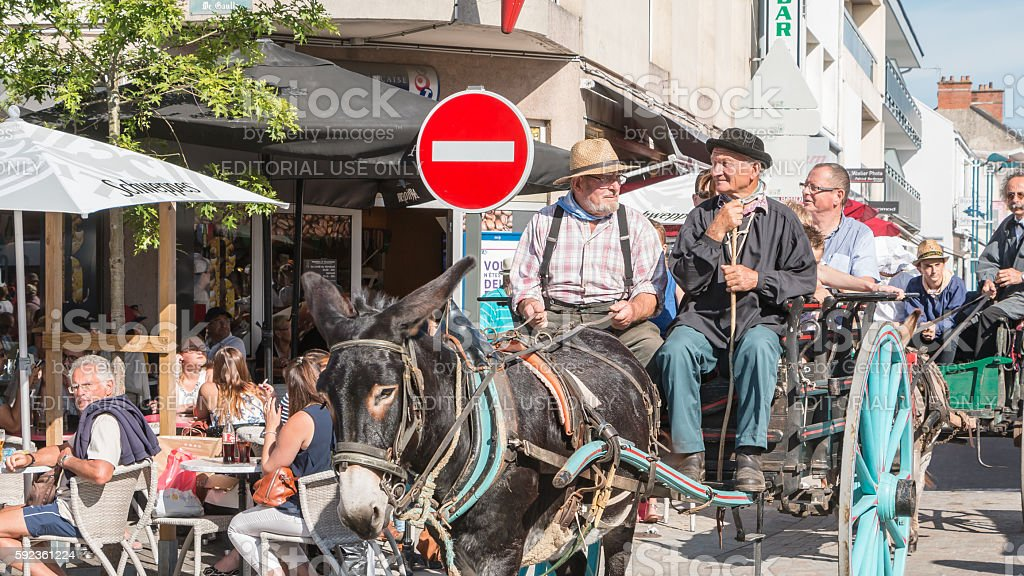antique cart pulled by a donkey stock photo
