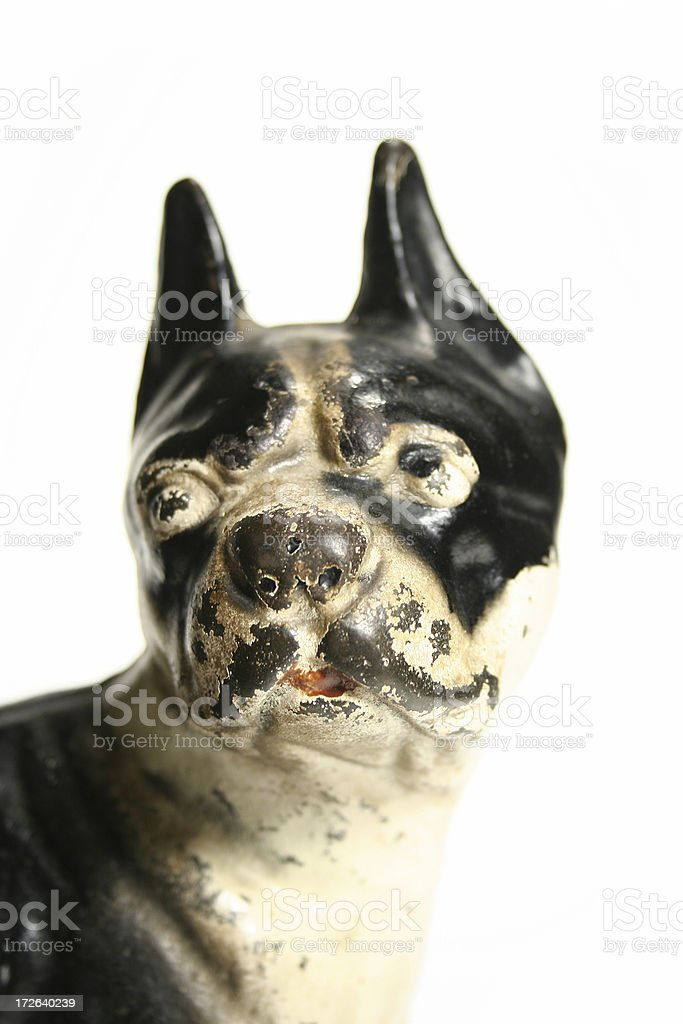 Antique Dog Face royalty-free stock photo