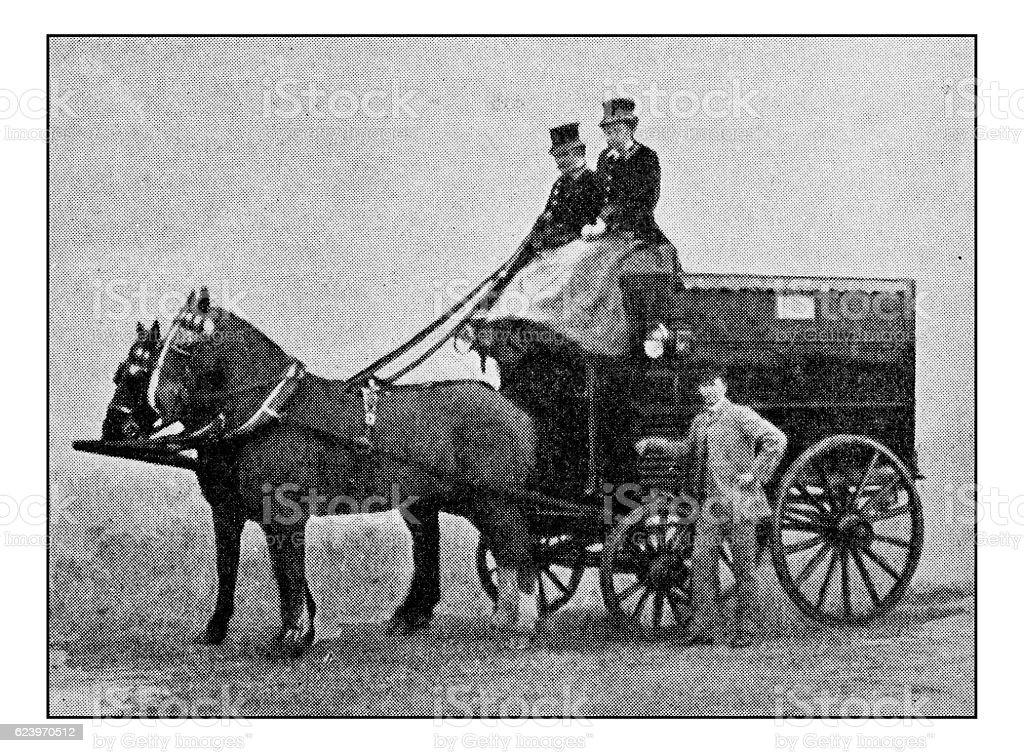 Antique dotprinted photograph of Hobbies and Sports: Deer cart stock photo