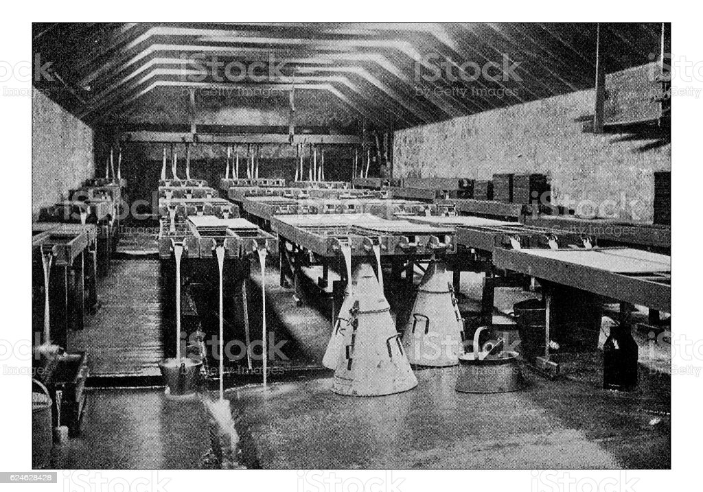 Antique dotprinted photograph of Hobbies and Sports: Fish farming stock photo