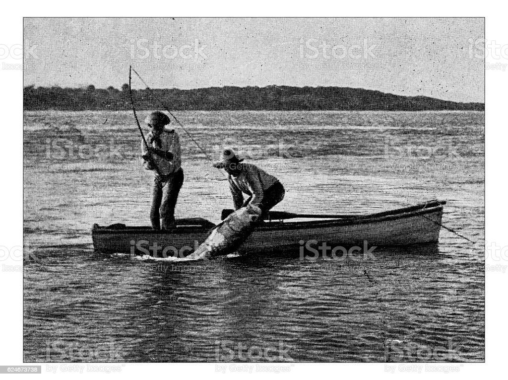 Antique dotprinted photograph of Hobbies and Sports: Tarpon fishing royalty-free stock photo