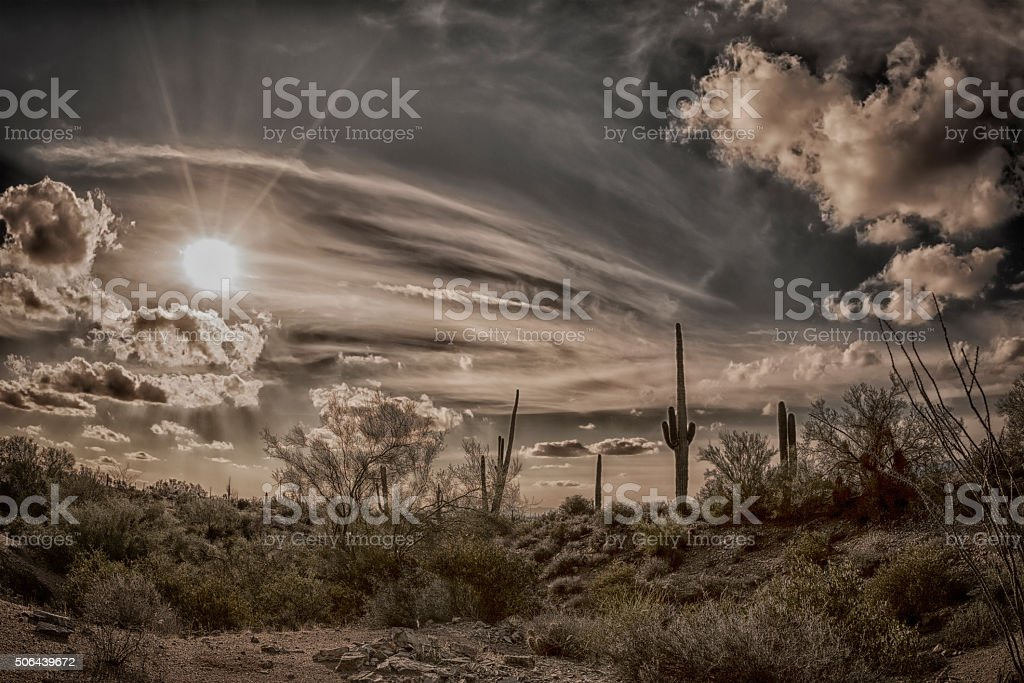 Antique image of the desert stock photo