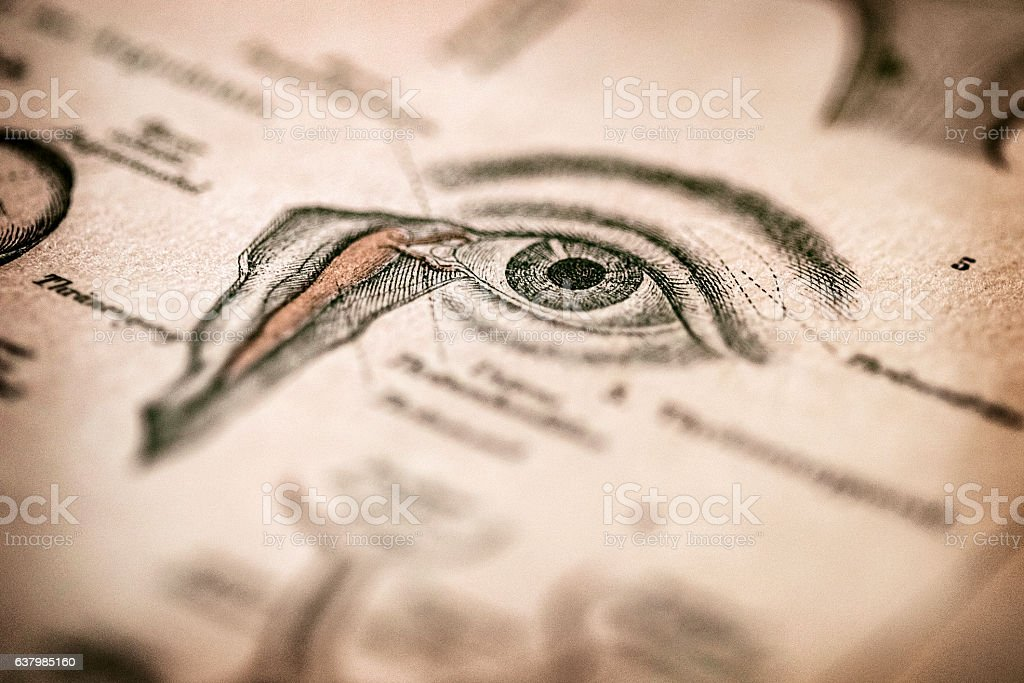 Antique medical book: Eye stock photo