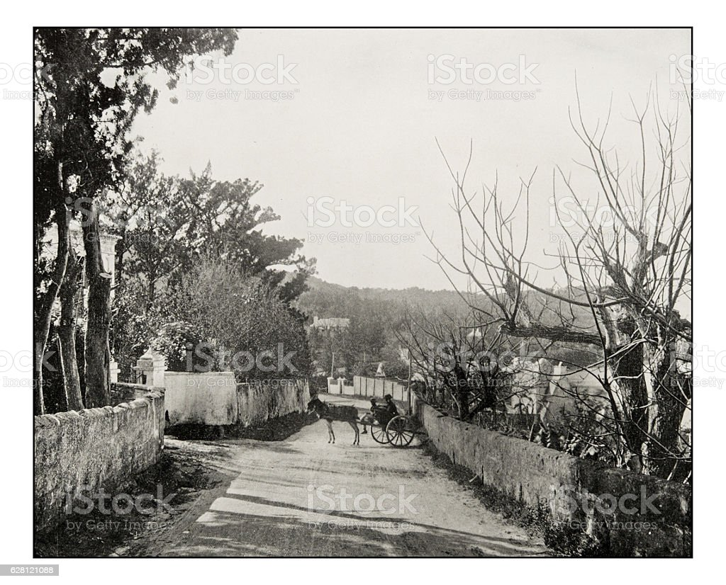 Antique photograph of road in Port Royal, Bermuda stock photo