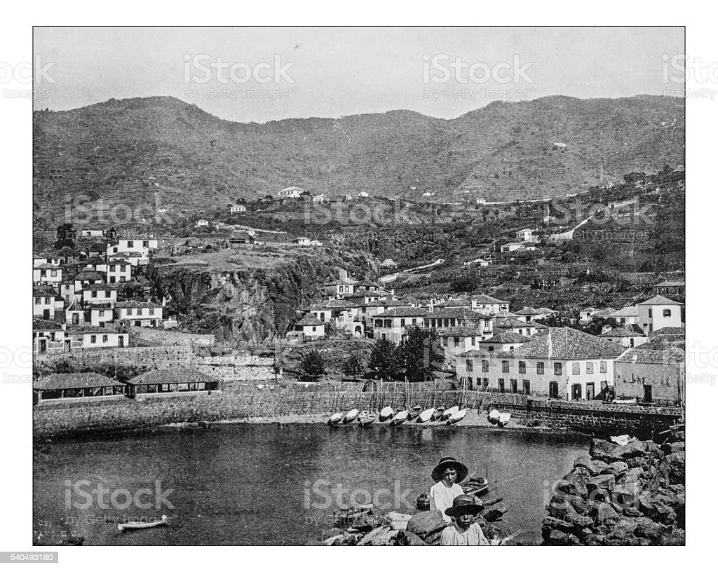 Antique photograph of view of Funchal (Madeira,Portugal), 19th century, stock photo