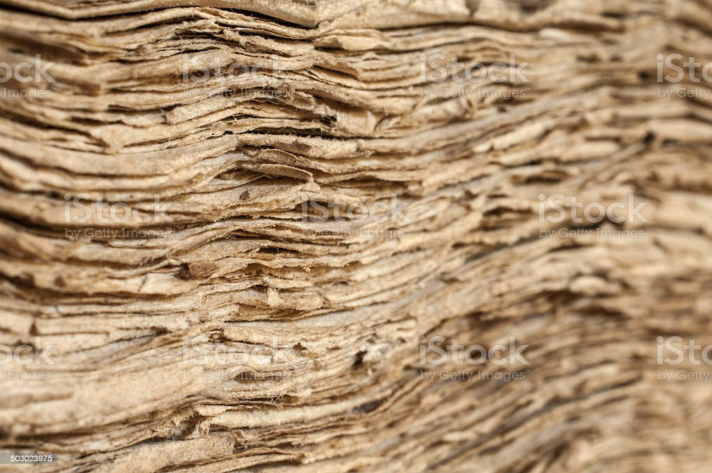 Antique sheets royalty-free stock photo