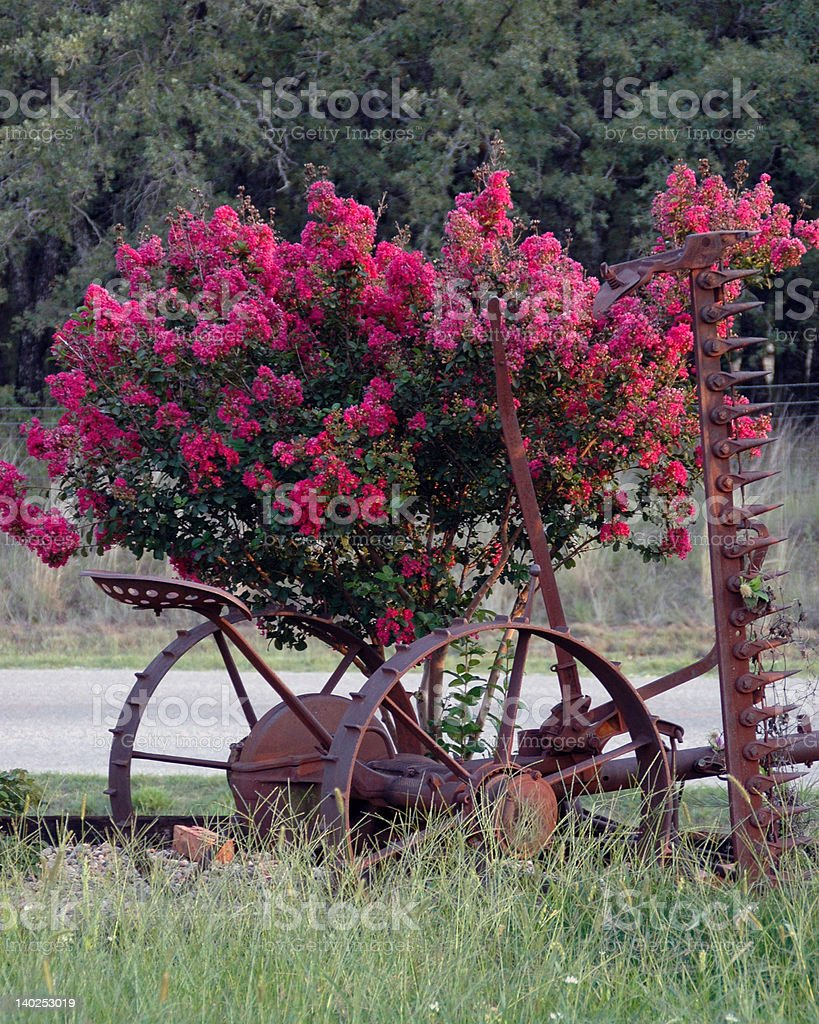 Antique Siclemower stock photo