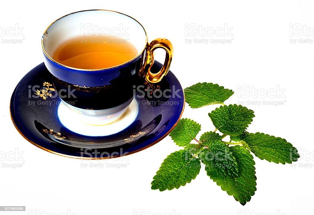 Antique Tea Cup, Elegant Porcelain Blue. Gold, Mint, Copy Space stock photo