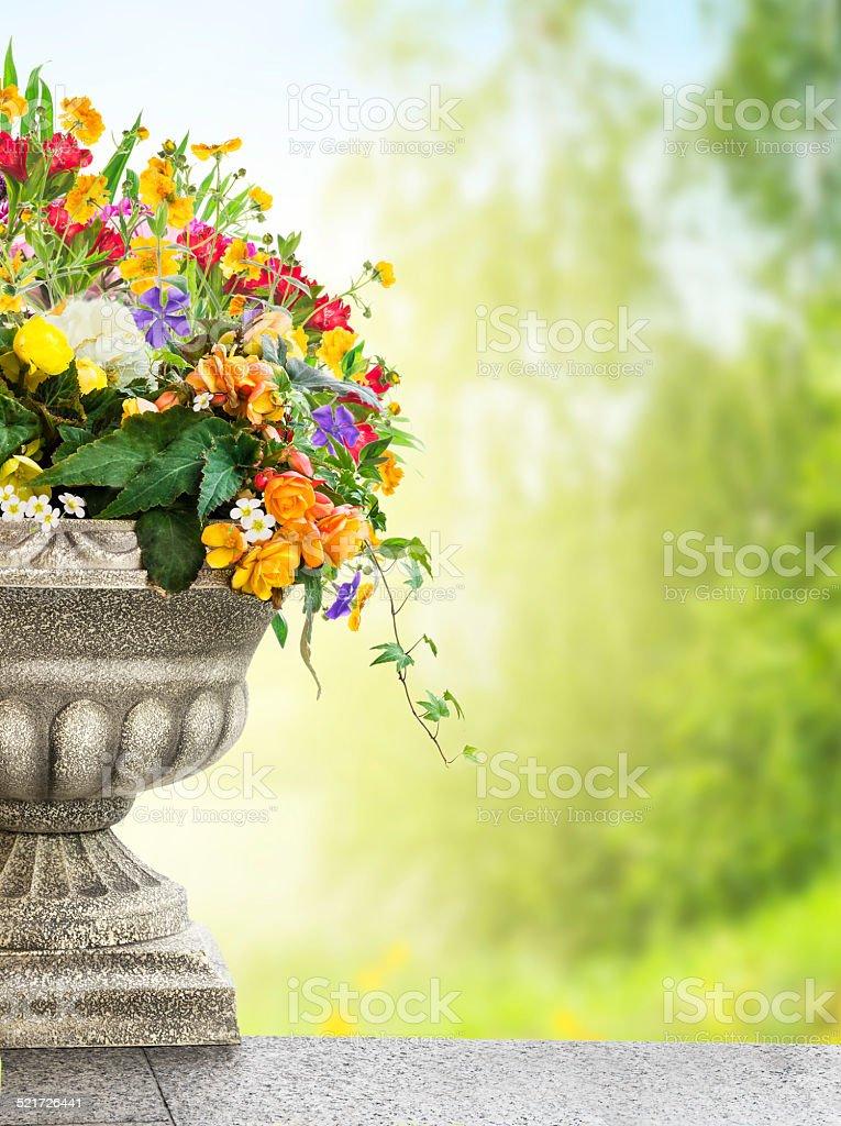 Antique vase with flowers in garden stock photo