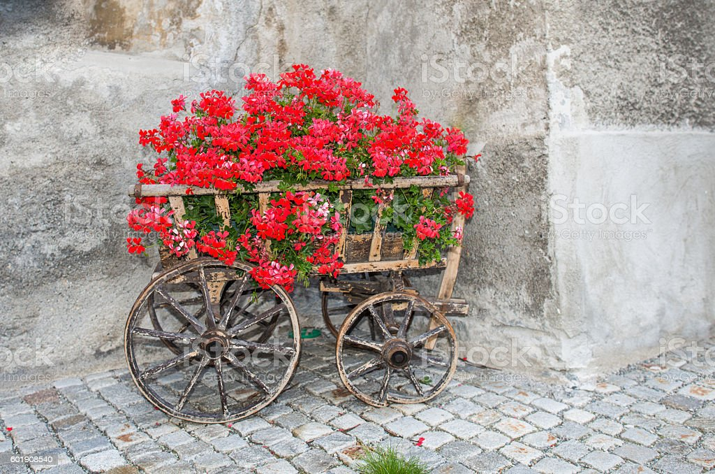 Antique wagon with red flowers stock photo