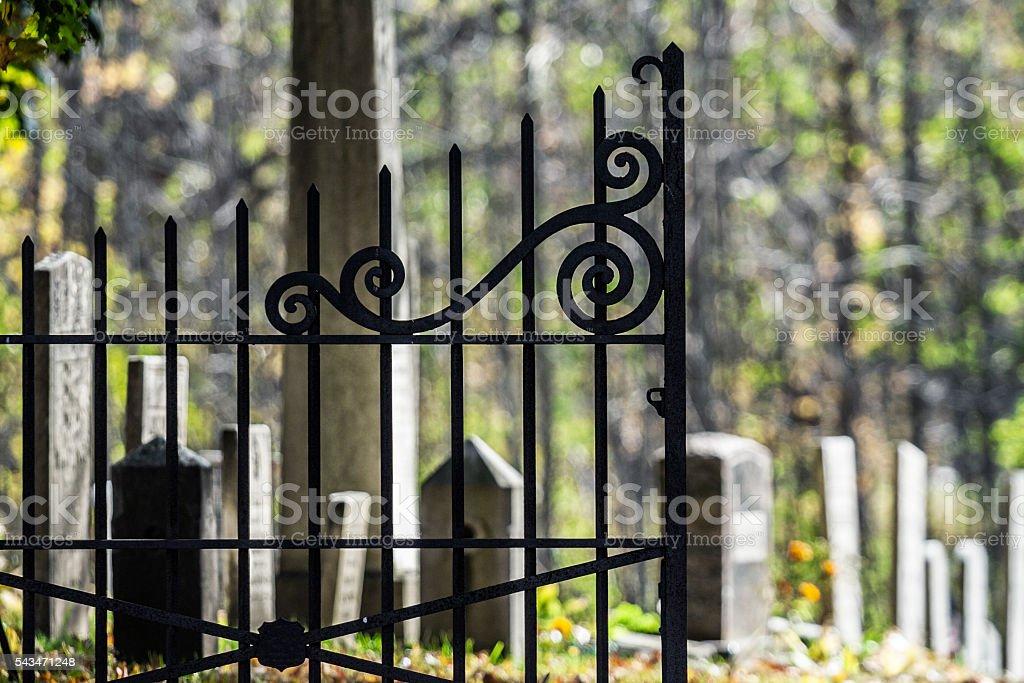 Antique Wrought Iron Churchyard Cemetery Gate stock photo