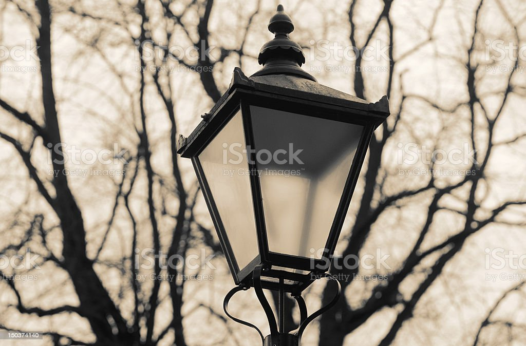 Antique-style street lamp, with bare trees stock photo