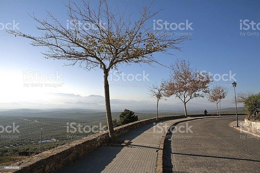Antonio Mu–?oz Molina walk at sunset stock photo