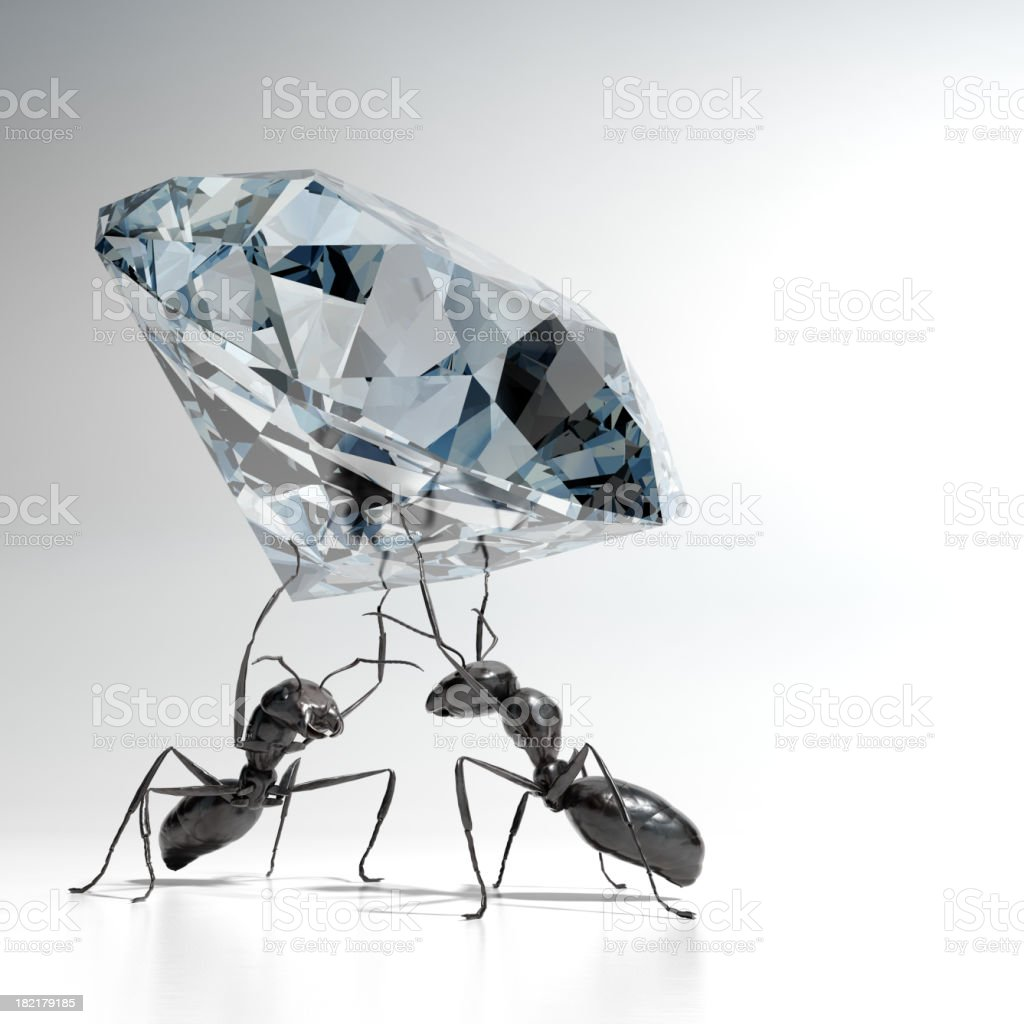 Ants carrying a Diamond stock photo