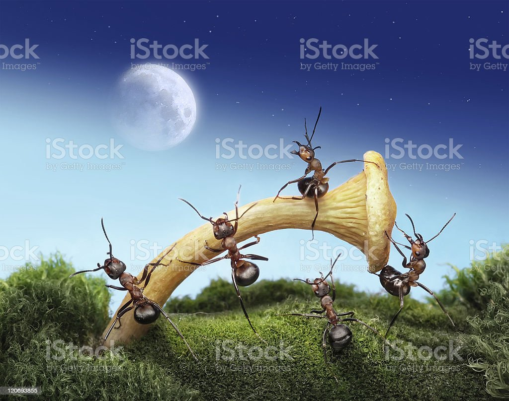 ants launching spaceman to the moon royalty-free stock photo