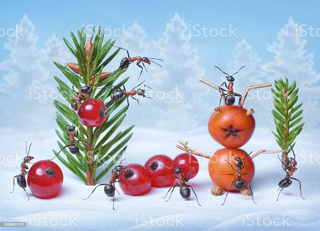 ants make Christmas tree and Santa Claus for New Year stock photo