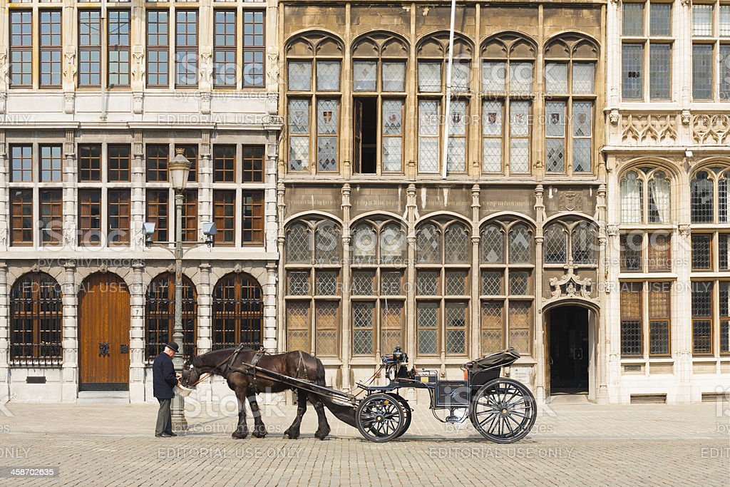 Antwerp Grote Markt Horse Buggy Driver Guildhouse stock photo
