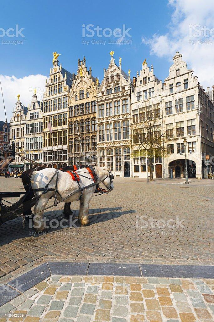Antwerp GuildHouses  Horses Daytime V stock photo
