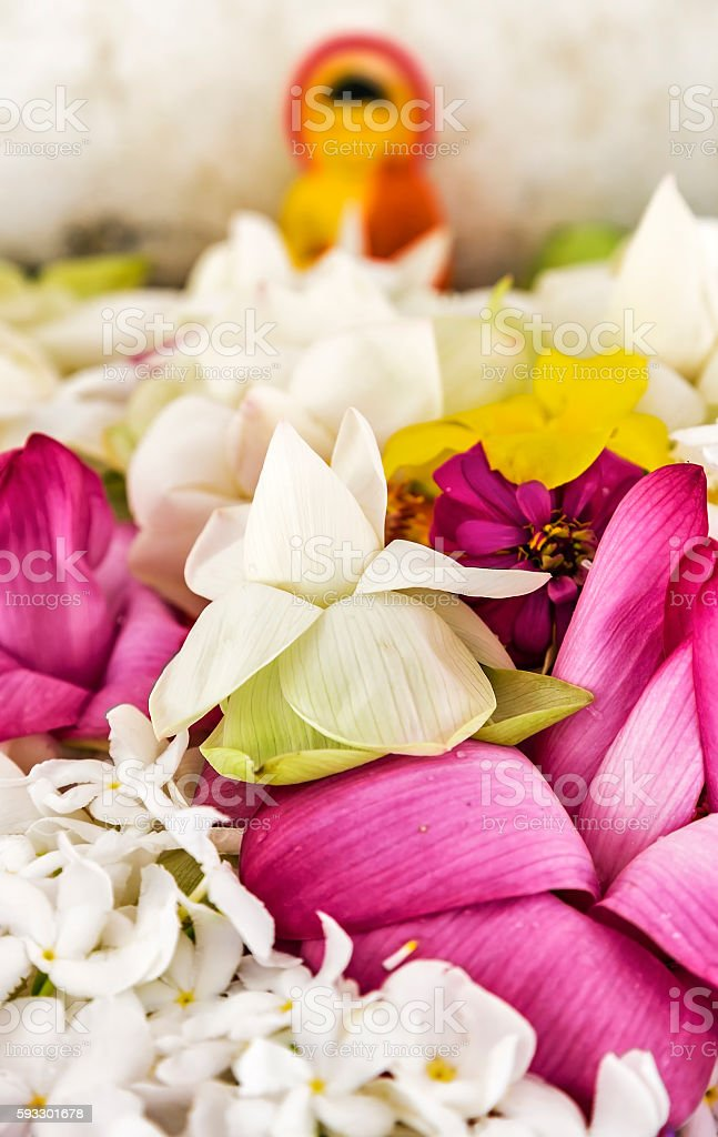 Anuradhapura Flower Buda stock photo