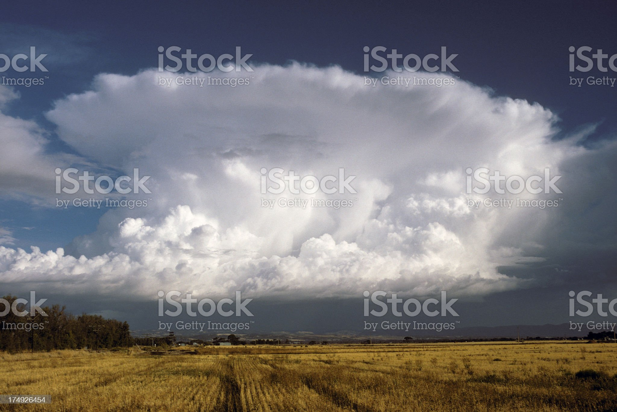 Anvil-shaped thunderstorm over yellow field. royalty-free stock photo