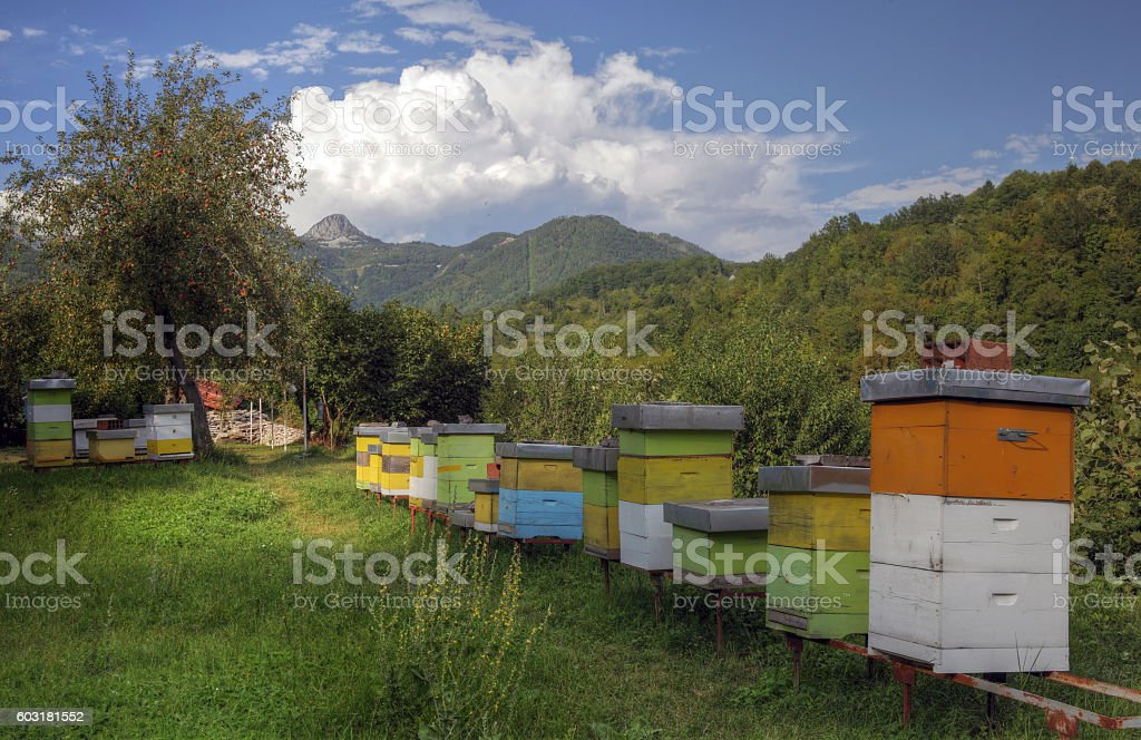 Apiary in mountains stock photo