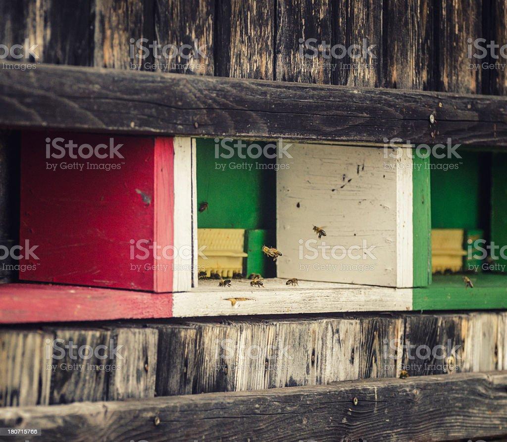 apiary royalty-free stock photo