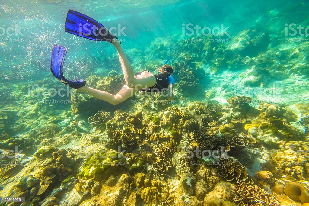 Apnea in tropical sea stock photo