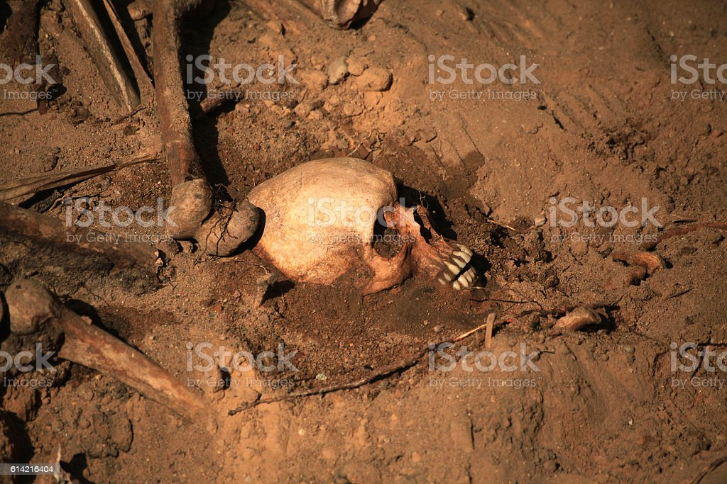 apocalypse concept skull and bones abstrarct background royalty-free stock photo