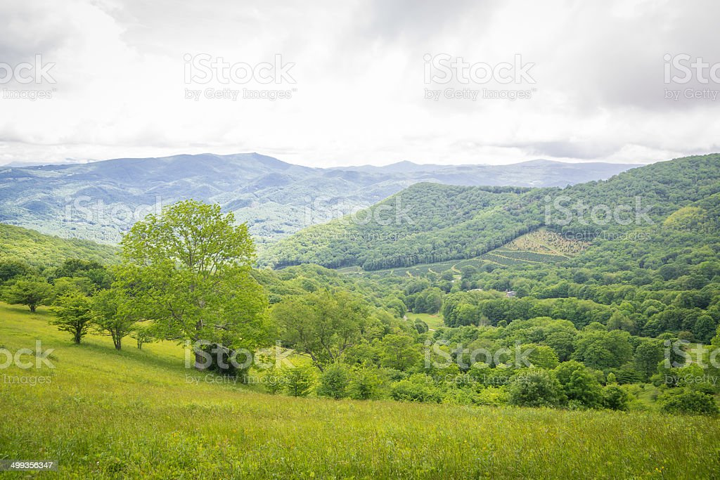 Appalachian Hike in the summer stock photo