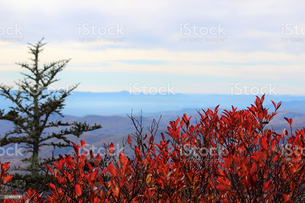 Monti Appalachi vista foto stock royalty-free