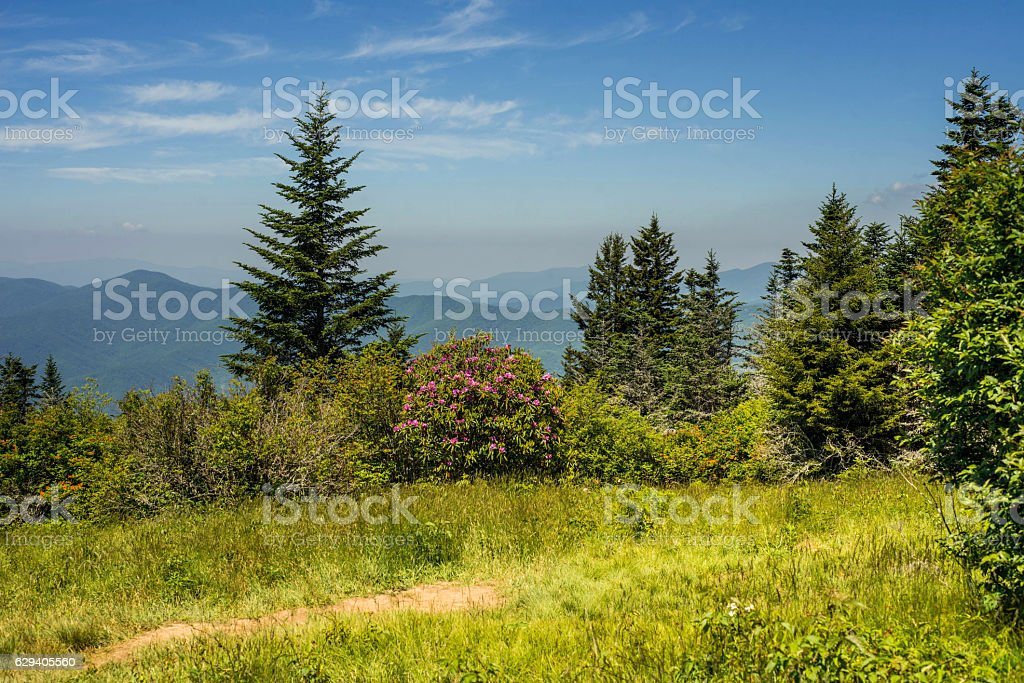 Appalachian Mountains and meadow stock photo