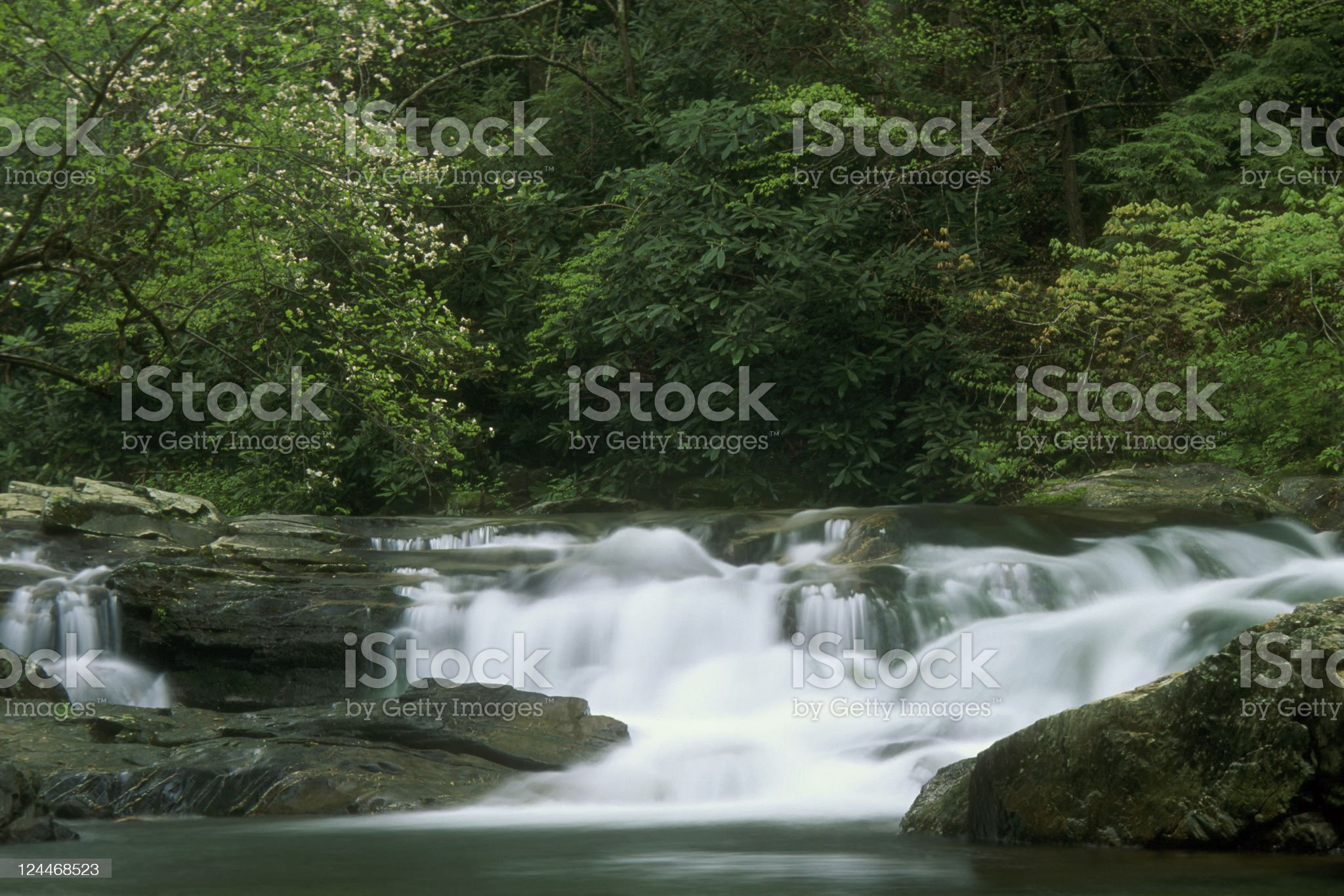 Appalachian River and Waterfall in Springtime. royalty-free stock photo